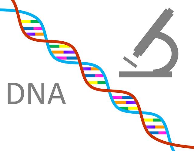 Dog∞ DNA