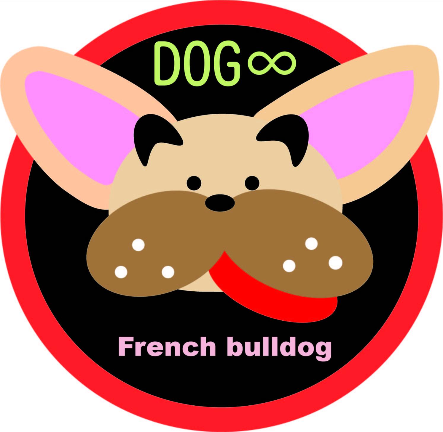 Dog∞/ドッグエイト 子犬販売