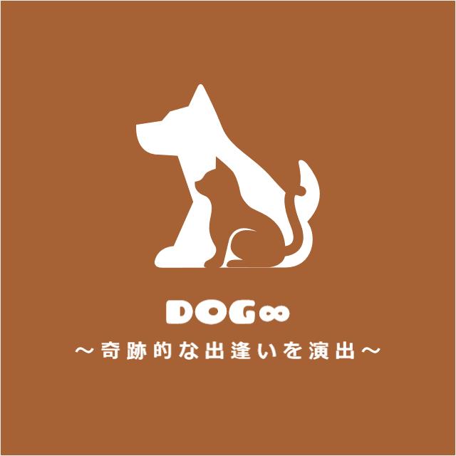 dog8logo2.png